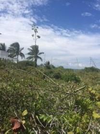 VENTA TERRENO EN LA PLAYA SAN BENITO en Dzemul, Yucatán