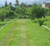 terreno de 200 metros a solo 45 minutos de xochimi en totolapan, Morelos