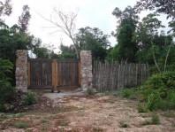 -Famosa Ruta de los Cenotes en Benito Juarez, Quintana Roo