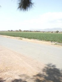 Rancho en venta Abasolo Gto. en Abasolo, Guanajuato