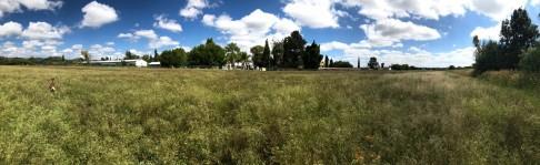 TERRENO EN VALLADOLID CON AGUA TERMAL en Jesús María, Aguascalientes