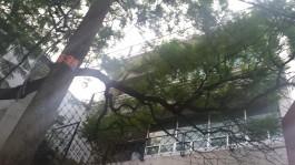 DEPARTAMENTO en Ciudad de México, Distrito Federal
