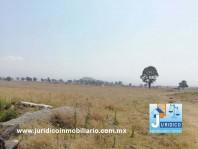 AMPLIO TERRENO EN SAN PABLO ATLAZALPAN, CHALCO, E en Chalco de Díaz Covarrubias, México
