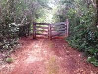 terreno a 26 k de oxcutzcab de 1557 hectareas en merida, Yucatan