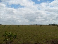 Terreno de 127,715 hectáreas en Ensenada BC en Cabo San Lucas, Baja California Sur