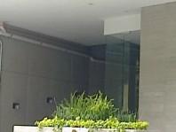 Rento departamento de lujo nuevo en Colonia Condes en Ciudad de México, Distrito Federal