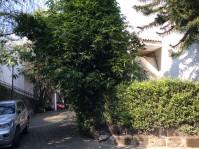 Casa en Desierto d los Leones Olivar de los Padres en Ciudad de México, Distrito Federal
