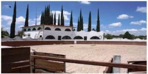 Rancho el Cortijo  Gto en Empalme Escobedo (Escobedo), Guanajuato