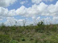 Terreno en venta en Merida en Merida, Yucatan
