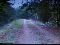 Terreno rural en venta en El Naranjo en El Naranjo, San Luis Potosi