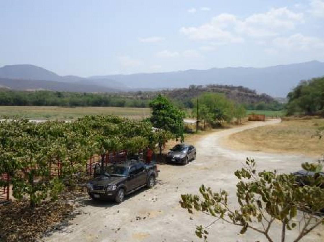 Terreno En Venta En Tehuixtla Jojutla 12084 Hab Tala # Muebles En Jojutla Morelos