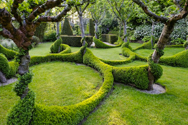 Consejos para decorar y dise ar tu jard n hab tala for Estudiar jardineria