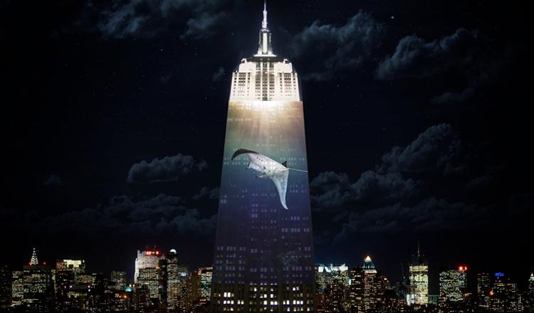 El Empire State se ilumina en defensa de los animales en peligro de extinción